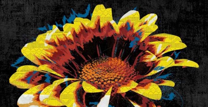 ALBUM - NOUVELLE FLEUR – ARAT KILO